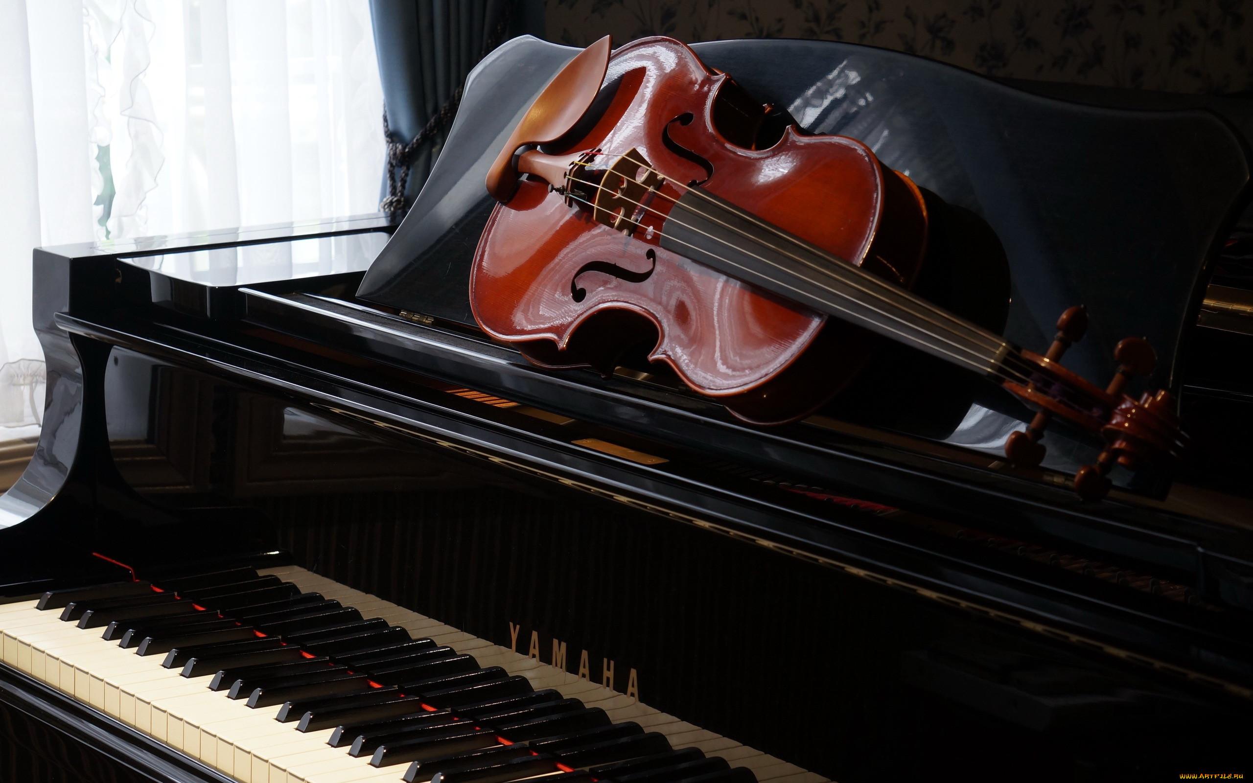 морковке равнодушны, картинки про пианино для рабочего стола для работы этом
